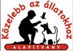 Közelebb az Állatokhoz alapítvány